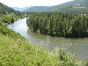 Алтай 2010 г. 296